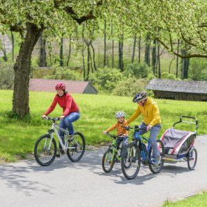 Padres utilizando su bicicleta para llevar niños mediante un remolque